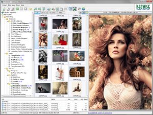 Bulk Image Downloader 5.45 Crack + Registration Code